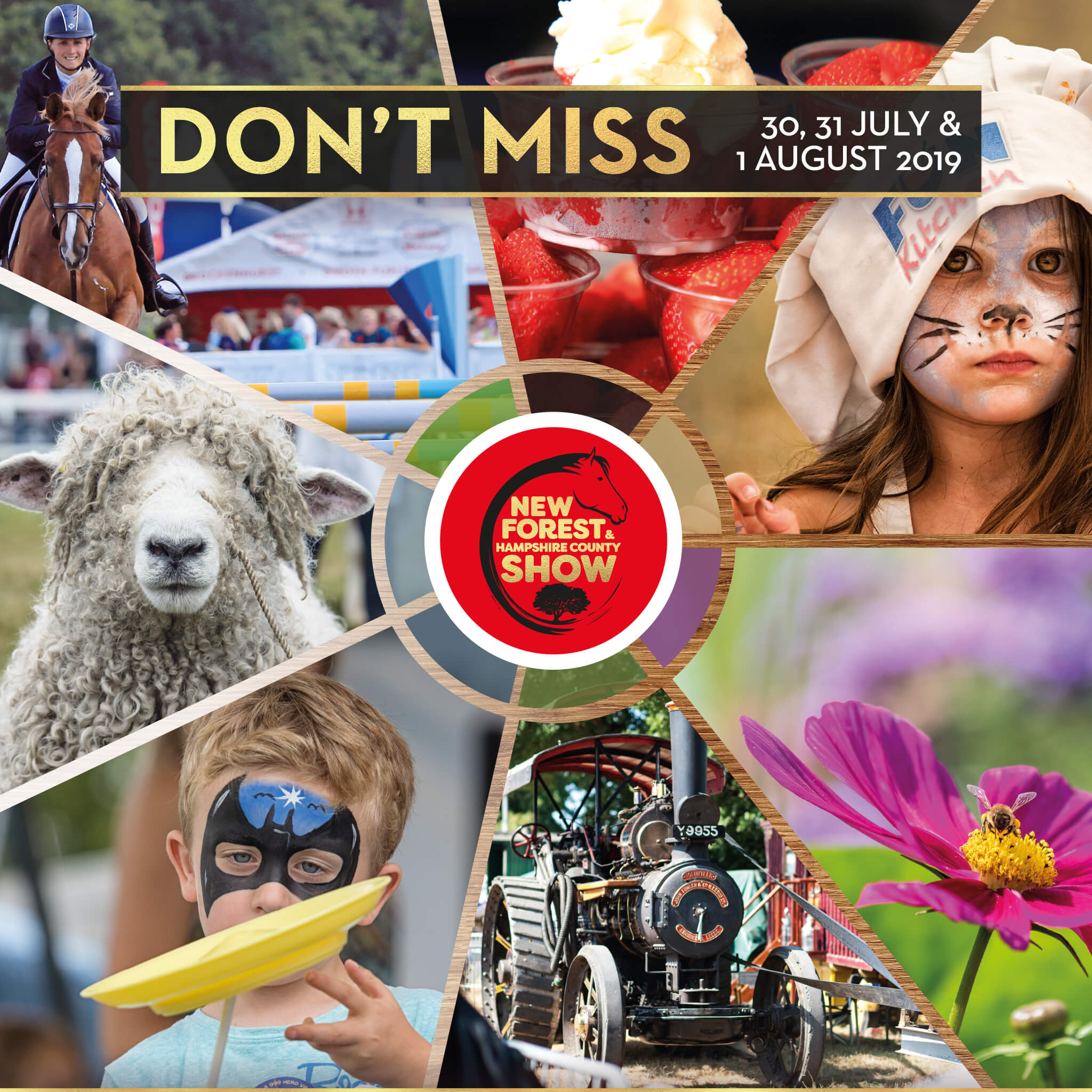 New Forest & Hampshire County Show 2019